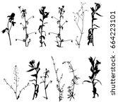 vector set of black wild plants ... | Shutterstock .eps vector #664223101
