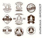 set of vector illustrations ... | Shutterstock .eps vector #664262629