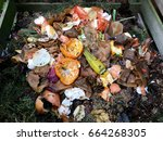 fresh bio waste and compost... | Shutterstock . vector #664268305