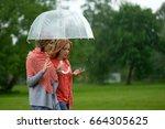 two women walking park in rain... | Shutterstock . vector #664305625