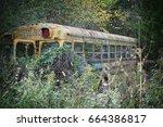 Old School Bus In Junk Yard