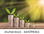 tree growing on coins stack... | Shutterstock . vector #664398361