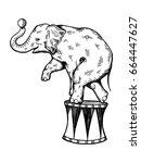 Circus Elephant Vector...