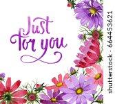 wildflower kosmeya flower frame ... | Shutterstock . vector #664453621