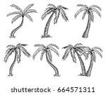 vector illustration of palm... | Shutterstock .eps vector #664571311