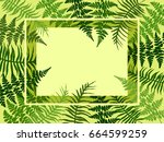 detailed bracken herbs drawing  ... | Shutterstock .eps vector #664599259