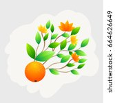 orange fruit whole with green... | Shutterstock .eps vector #664626649