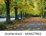 shinjuku park in autumn  tokyo...   Shutterstock . vector #664627861