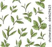 seamless pattern green tea ... | Shutterstock .eps vector #664629625