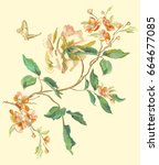 embroidery floral pattern with... | Shutterstock .eps vector #664677085