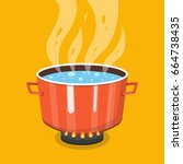 boiling water in pan. cooking...   Shutterstock .eps vector #664738435