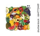 square of fruit. fresh food.... | Shutterstock .eps vector #664772449