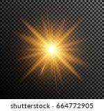 vector illustration of golden... | Shutterstock .eps vector #664772905