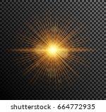 vector illustration of golden... | Shutterstock .eps vector #664772935