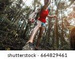woman hiker applying mosquito... | Shutterstock . vector #664829461