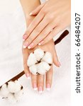 nicely manicured hands with... | Shutterstock . vector #66484207