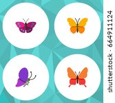 flat icon butterfly set of... | Shutterstock .eps vector #664911124