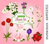 Spring Flowers Set For...
