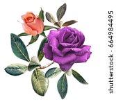 illustration of beautiful... | Shutterstock . vector #664984495
