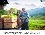 farmer holding an eggplant in a ... | Shutterstock . vector #664986121