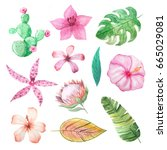 set of watercolor hand painted... | Shutterstock . vector #665029081