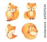 cute cartoon watercolor forest... | Shutterstock . vector #665029144