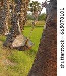wooden swing under the sugar...   Shutterstock . vector #665078101