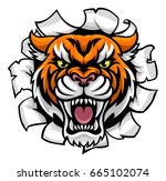 a tiger angry animal sports... | Shutterstock .eps vector #665102074