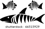 Tiger Shark And Piranhas....