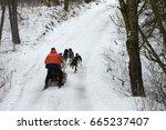dog sledding uphill through the ... | Shutterstock . vector #665237407