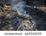 white smoke from bonfire   Shutterstock . vector #665243239