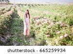 pretty young tender woman... | Shutterstock . vector #665259934