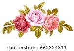 Vector Floral Set Bouquet Bunc...