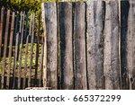 close up of line light brown... | Shutterstock . vector #665372299
