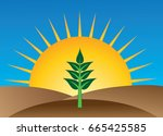 natural organic farming  ...   Shutterstock . vector #665425585