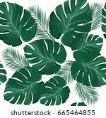 vector illustration of palm... | Shutterstock .eps vector #665464855