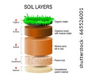 Soil Layers. Soil Formation An...