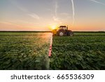 tractor spraying pesticides on...   Shutterstock . vector #665536309