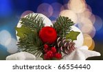 christmas decoration with red... | Shutterstock . vector #66554440