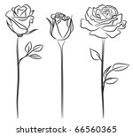 Stock vector three roses in hand drawn style 66560365