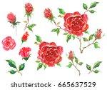 Watercolor Handmade Roses Set...