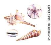 watercolor illustrations of...   Shutterstock . vector #665715355