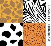 giraffe skin zebra skin cow... | Shutterstock .eps vector #665759347