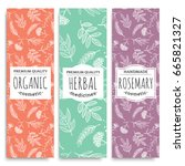 herbal vertical banners with... | Shutterstock .eps vector #665821327