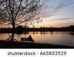 man relaxing on a bench under a ... | Shutterstock . vector #665853529