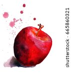 watercolor red apple | Shutterstock . vector #665860321