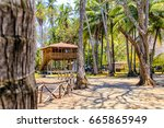 tropical house in the middle of ... | Shutterstock . vector #665865949