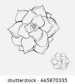 illustration  hand drawn  of a... | Shutterstock . vector #665870335