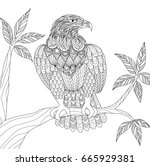 hand drawn tribal eagle sitting ... | Shutterstock .eps vector #665929381