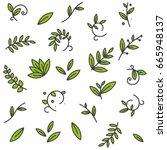 green floral decorative branch...   Shutterstock .eps vector #665948137